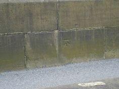 Cut Mark Tintwistle Bridge   SK 0205 9696 (1)