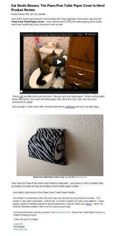 cat proofing for your toilet paper holder. How To Cat, Hysterically Funny, Over Toilet, Paper Cover, Diy Stuffed Animals, Toilet Paper, Fur Babies, Dog Cat, Pets