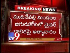 Minor girl raped by auto driver in Krishna