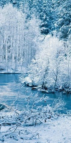 Winter iPhone Wallpaper iPhone Wallpaper, Schnee Wallpaper, iPhone Wallpaper w … – Carpe Diem Willkommen Winter Love, Winter Is Here, Winter Snow, Winter Images, Winter Pictures, Iphone Wallpaper Winter, Iphone Wallpapers, Wallpaper Backgrounds, Winter Scenery