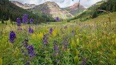Crested Butte, Colorado. COURTESY JOHN FIELDER