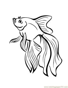 Fish coloring page - Free Printable Coloring Pages