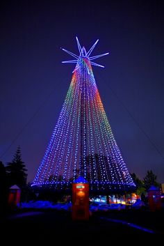 Image Detail for - Aucklanders are encouraged to head down to Victoria Park to see the lighting of the Telecom Christmas