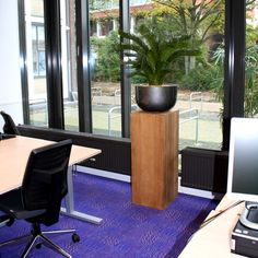 Met deze prachtige Cycas kunstpalm in luxe polystone schaal op houten plantenzuil brengt u direct een luxe sfeer aan in uw interieur! Vraag naar de beplantingsmogelijkheden bij Maxifleur Kunstplanten