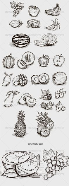Sketched-Style Fruit Illustrations - Food Objects