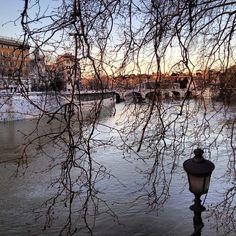#Roma primavera tevere @ Lungotevere Dei Fiorentini