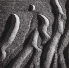 Untitled, from the portfolio Wind, Water and Sand by Henry Troup. Search the Smithsonian American Art museum collection, one of the world's largest and most inclusive collections of art made in the United States. Photography 2017, Dark Photography, Black And White Photography, Gcse 2017, Used Cameras, Depth Of Field, First Art, Detailed Image, Natural Forms
