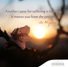 Another cause for suffering is labeling. It moves you from the present. -Sri Bhagavan