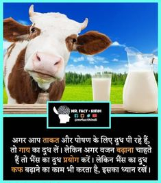 Interesting Facts In Hindi, Gernal Knowledge, Did You Know, Fun Facts, Doors, Note, Tips, Photos, Pictures