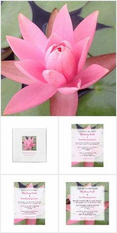 Pink Water Lily Lotus Wedding  Invitations by Janusian Gallery. #zazzlemade