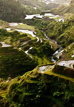 Philippines. Rice Terraces, Banaue