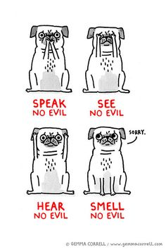 there are no evil pugs. Funny Dogs, Funny Animals, Cute Animals, Animals Dog, Pug Illustration, Pugs And Kisses, See No Evil, Pug Art, Black Pug