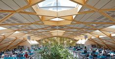gridshell roof - Google Search