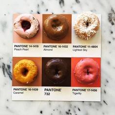 Donuts and Pantone Color Swatches ~ Laughing Squid Pantone Swatches, Color Swatches, Pantone Colour Palettes, Pantone Color, Colour Pallette, Colour Schemes, Color Tones, Color Shades, Color Combos
