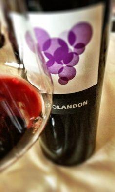El Alma del Vino.: Altolandón Bodega y Viñedos Altolandón 2008.