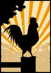 Crowing Rooster in Farmyard vector art illustration