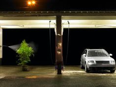 Plant being watered at self service car wash - Ryan McVay/Photodisc/Getty Images