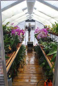 - Wade went to Pittsburgh Orchid society to give a lecture on building a greenhouse. Even sold some plants. Backyard Greenhouse, Greenhouse Growing, Small Greenhouse, Greenhouse Plans, Greenhouse Shelves, Greenhouse Frame, Greenhouse Supplies, Orchid House, Greenhouse Interiors