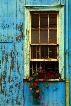 """bellasecretgarden: """" (via Valparaiso, Chile Arched Windows, Windows And Doors, Beautiful World, Beautiful Places, Door Detail, Road Trip Essentials, Window Sill, Photo Backgrounds, Abandoned Houses"""