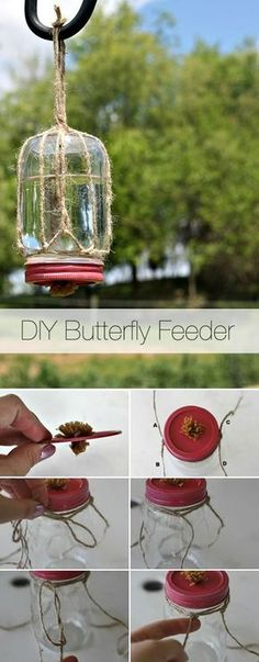 Attract butterflies to your spring garden with this DIY butterfly feeder!