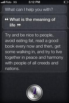 Gotta love Siri