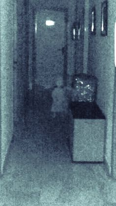 City Hall of Vegas del Genil, located in the center of Purchil - A council member took this photo of what appears to be a child after experiencing paranormal phenomenon. Creepy Ghost, Creepy Art, Creepy Stuff, Scary Ghost Stories, Real Ghost Pictures, Ghost Pics, Photos Of Ghosts, Paranormal Pictures, Paranormal Stories