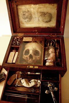 esqueletos criaturas fantasticas esculturas alex cf (3)