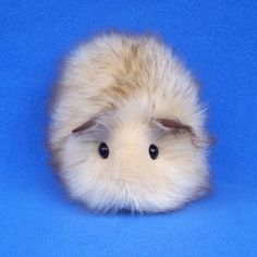 Honey Blonde Guinea Pig--Handmade Toy  | FurryThangs - Toys on ArtFire