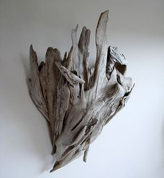 Use driftwood as an accent