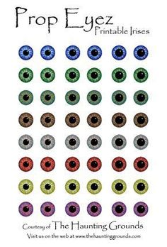 Simple Eyeshadow, Natural Eyeshadow, Eyeshadow Primer, Eye Shape Makeup, Eye Makeup, Eye Shadow Application, Eyeshadow Step By Step, Eyes Artwork, Makeup Tutorial Eyeliner