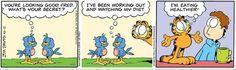 Garfield Comic Strip From Garfield Comics, Jim Davis, Comic Strips, Humor, Tv, Kids, Young Children, Boys, Comic Books