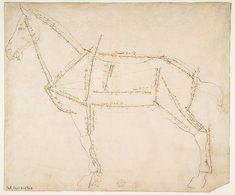 Andrea del Verrocchio (Italian, 1435–1488). Measured Drawing of a Horse Facing Left (recto),  ca. 1480–88. The Metropolitan Museum of Art, New York. Frederick C. Hewitt Fund, 1917 (19.76.5)