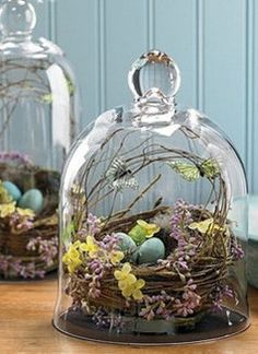 Bird's nest with eggs in basket under glass dome / romantic shabby cottage chic home decor.