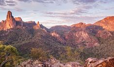 Warrumbungle National Park near Coonabarabran in NSW is great for camping, walking, birdwatching and, as Australia's only Dark Sky Park, it's perfect for stargazing.
