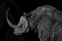 ellen jewett sculture ibride di animali e piante