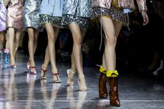 Miu Miu Accessories Fall/Winter 2014