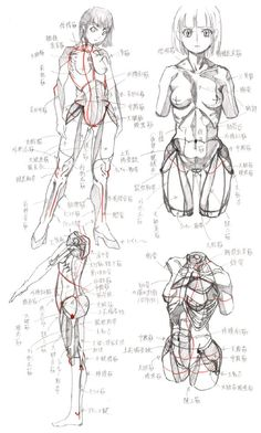 Fit Guinea Pig Girl Stomach muscles Excitement - 25 Photos Of Females With Formed Abdominal muscle groups Body Reference Drawing, Drawing Female Body, Human Drawing, Art Reference Poses, Anatomy Reference, Manga Drawing, Anatomy Sketches, Anatomy Drawing, Anatomy Art