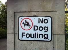 apparently dog fouling is a big problem there street signs funny names funny