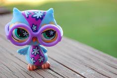 littlest pet shop owl