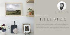 Juniper Print Shop All Art, Art Ideas, Fill, Gallery Wall, Peace, Artist, Shopping, Artists, Sobriety
