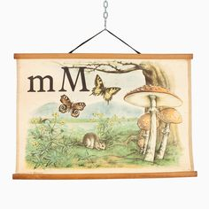 "Original school poster - alphabet - letter ""M"" School Posters, See Photo, Past, Alphabet, Vintage World Maps, Memories, Lettering, The Originals, Retro"