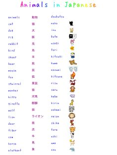 Study Japanese: Animals by ~misshoneyvanity on deviantART Learn Japanese Words, Study Japanese, Japanese Kanji, Japanese Culture, Learning Japanese, How To Speak Japanese, Japanese Travel, Japanese Spitz, Japanese Colors