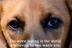 Unwanted...