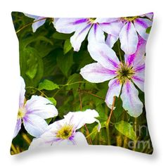 Lovely Clematis Throw Pillow by Flamingo Graphix John Ellis