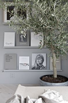 OUR NEW GREY BOOK WALL & A BIG OLIVE TREE Although I really liked how our book wall used to look like in black, I actually prefer this lighter look that we got after I replaced it with the perfect gre Olivier En Pot, Interior Styling, Interior Design, Luxury Interior, Book Wall, Ideas Hogar, Scandinavian Interior, Home And Living, Clean Living
