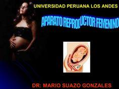 aparato-reproductor-femenino-3630615 by CEMA via Slideshare