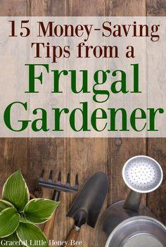 15 Money-Saving Tips from a Frugal Gardener