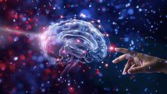 """Cât timp ne trebuie oare pentru a ne pregăti pentru un examen, pentru a rezolva un sudoku sau pur și simplu pentru a ne aminti numele unei rude îndepărtate, nume care «nu ne mai vine în minte» într-un anume moment? Fiecare persoană are propriul ritm de învățare și cu toții putem suferi din când în când de mici """"goluri"""" de memorie, acele lapsusuri… Din fericire, progresele științifice au arătat că ne putem îmbunătăți capcitățile cognitive, grație substanțelor și plantelor numite nootrope. Trauma, Branches Of Psychology, Mental Health Benefits, Mental Health Problems, Good Mental Health, Facts About Humans, Career Choices, Body Tissues, Best Careers"""