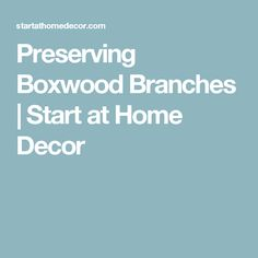 Preserving Boxwood Branches | Start at Home Decor