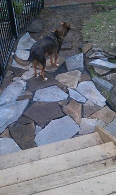 building my own stone sidewalks, will meander between my produce beds.